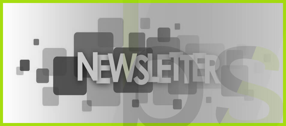newsletter blog seo
