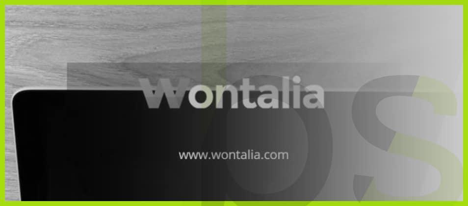 wontalia curso seo 1